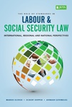 Role of Standards in Labour & Social Security Law, The
